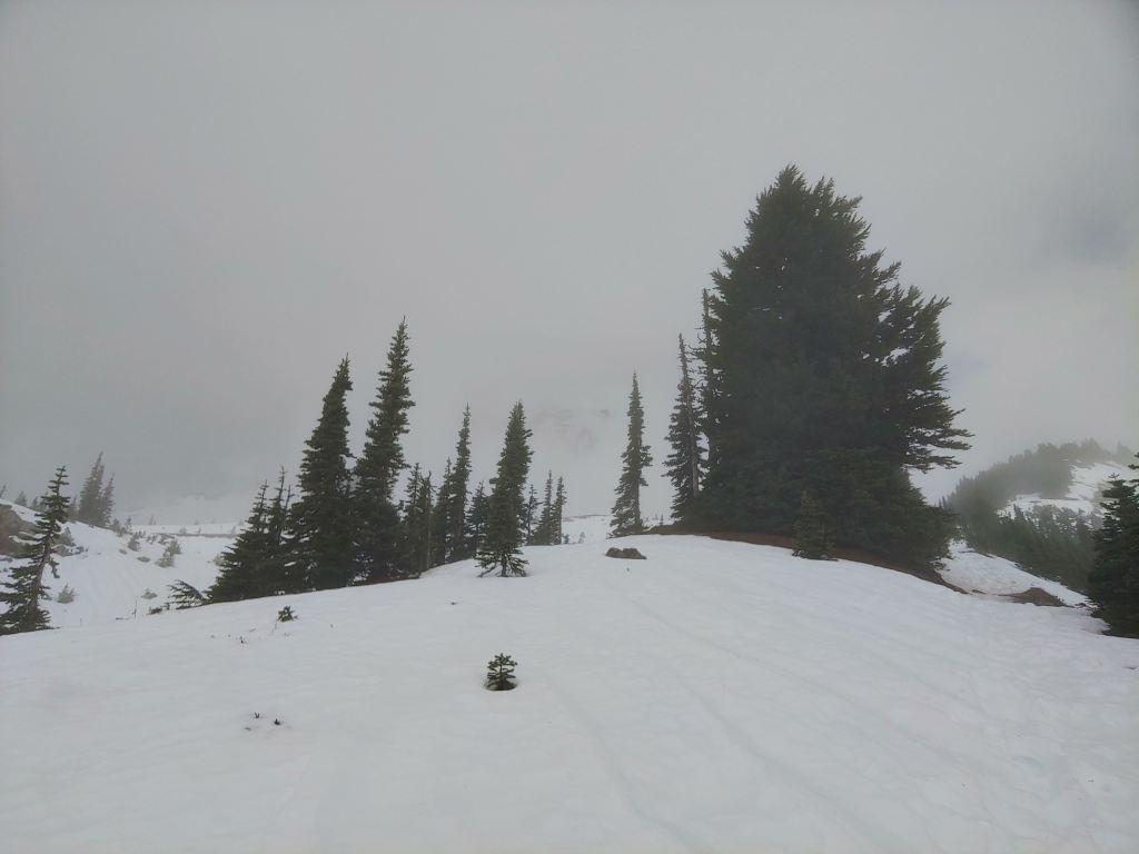 Snowy Mt Rainier